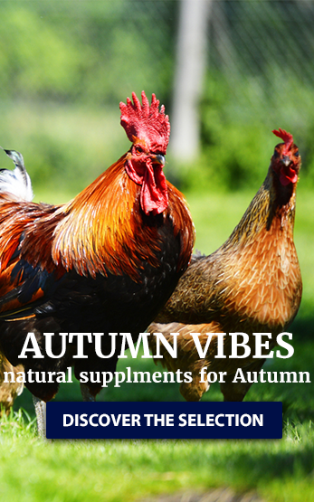 Homepage Right Poultry image
