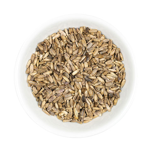 Milk Thistle seed whole in dish