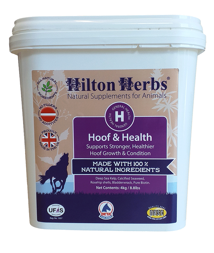 Hooth & Health - 8.8lb Tub Front