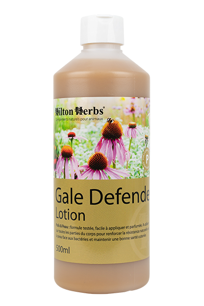 Flacon de Gale Defender Lotion de Hilton Herbs