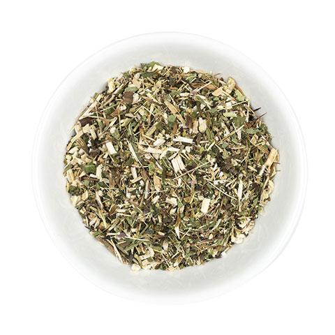 Echinacea cut herb in dish