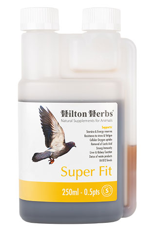 Super-Fit - Energy booster for Racing Pigeons - 250ml bottle