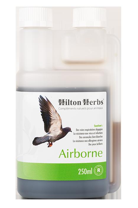 Complément pour pigeons voyageurs Airborn de Hilton Hebrs