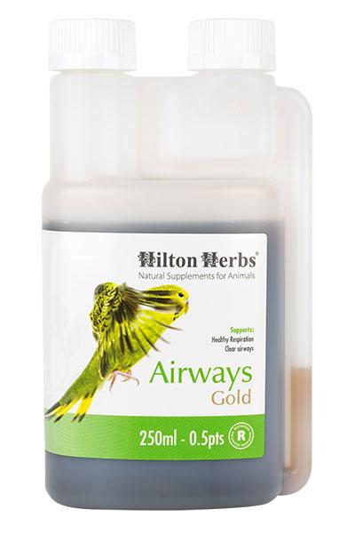 Airways Gold - Optimum respiratory function for Birds & Poultry - 250ml bottle
