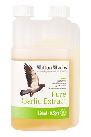 Pure Garlic Juice for Birds - 250ml bottle