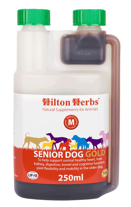 Senior Dog Gold - 0.5pt